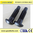 High Strength TC Bolt  S10T JSS II09